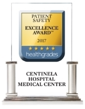 Patient Safety Excellence Award 2017